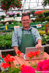 Photo of a happy smiling Hispanic man using laptop in greenhouse and wearing a green apron. The man may be an employee, or he might be the small business owner. Rows of plants all around him.
